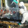 Туристка из Нигерии привезла в Турцию лихорадку Эбола