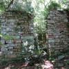 Археологи обнаружили заброшенное убежище нацистов в джунглях Аргентины