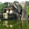 Шри-Ланка. Исторический город Анурадхапура