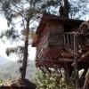 Отель «Дома на деревьях Кадира» стал тренировочным лагерем AKUT