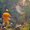 Пожар в Кемере уничтожил 5 га леса рядом с курортной зоной