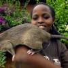 Обнаружены останки древних крыс, которые не уступали размерами собаке