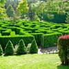 Шри-Ланка. Королевское великолепие Ботанического Сада Парадения