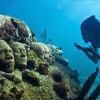 Базилика в озере Изник станет подводным музеем