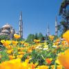 Стала известна расстановка сил среди компаний, реализующих туры в Турцию на территории России