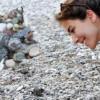 Туристы в Кемере помогли черепашкам добраться до моря