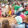 ВНабережных Челнах побит рекорд Российской Федерации на наибольший яблочный пирог
