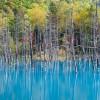 Неимоверный Голубой пруд в Японии с насыщенным небесным цветом