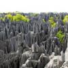Самое необычное место на земле — Каменный лес заповедника Цинги-де-Бемараха