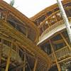 Эко-отель на  Бали, построен из одного бамбука