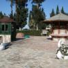 Красивейший Лебединый парк в Кемере