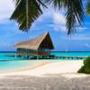 Российских туристов в Доминикане за 80 000 рублей поселили в отель без воды и света