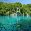 Окрестности Плитвицких озер: когда природа живет сама по себе
