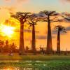 Хотите побывать на острове, который не имеет аналогов — отправляйтесь на Мадагаскар!