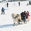 Катание на русской тройке в горнолыжном центре Джибилтепе в Сарыкамыш открыто для сезона