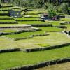 Филиппины: Банауэ — рисовые террасы и горячие источники