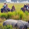 Туризм является одной из крупнейших отраслей в мире, растущей в ускоренном темпе