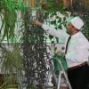 Турок создает ботанический сад в мечети, привлекая детей и туристов