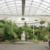 Ботанический сад в Глазго