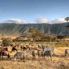 Танзания предлагает не только сафари, но и исторический туризм, так как работает над восстановлением древнего города