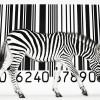 Штрих коды стран производителей: полезная информация в помощь туристу