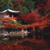 «Travel + Leisure» поставил японский Киото на первую строчку рейтинга туристической привлекательности