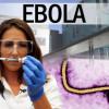 Два иностранных волонтёра заразились лихорадкой Эбола в Сьерра-Леоне