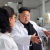 Новая причёска и выбритые брови Ким Чен Ына вызвали издёвки западных СМИ