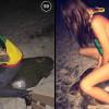 Американка пойдёт под суд за катание на морской черепахе