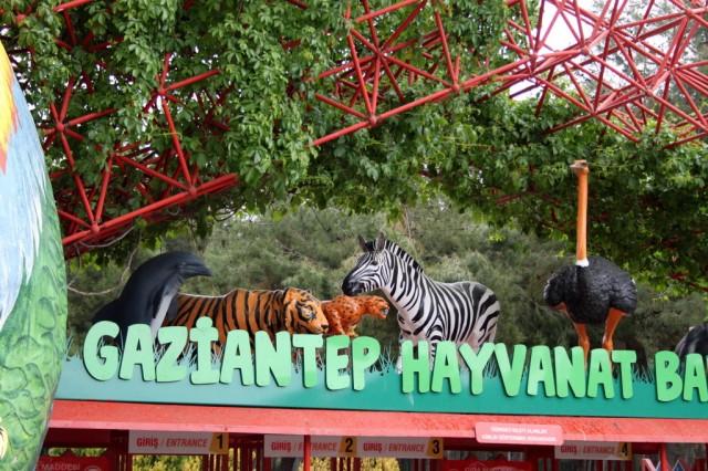 зоопарк в газиантепе фото
