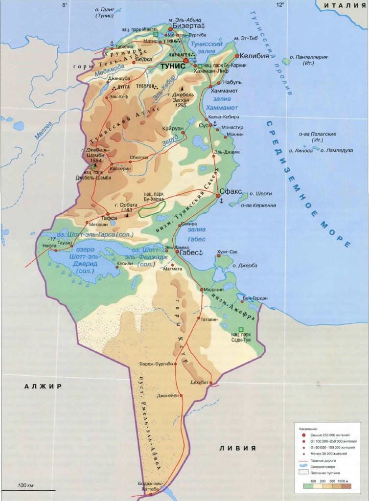 русская карта туниса