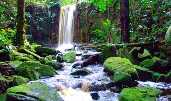 80% территории страны - это непроходимые и неизведанные джунгли