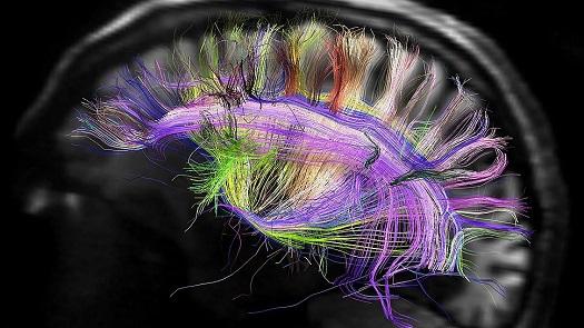 Ученые'критическая точка сознания человека есть