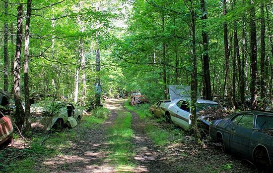 Самое большое в мире кладбище старых автомобилей