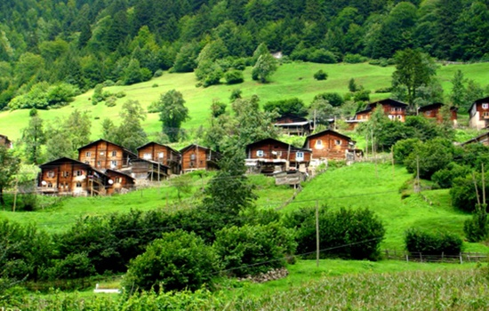 Откройте для себя зеленые горные районы северной Турции