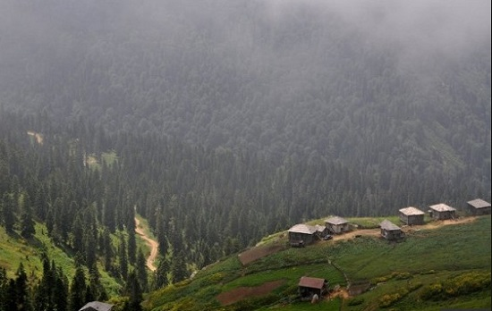 Грузия: новому горнолыжному курорту в Гурии - быть!
