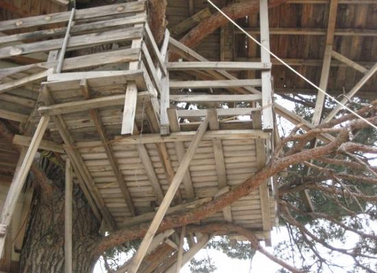 Неизвестная Анталия – потрясающий завтрак в сказочном домике на дереве