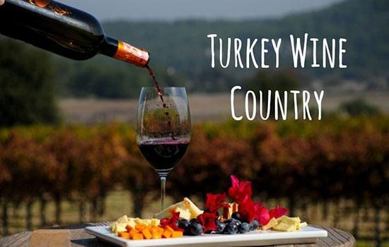Турция - винная страна