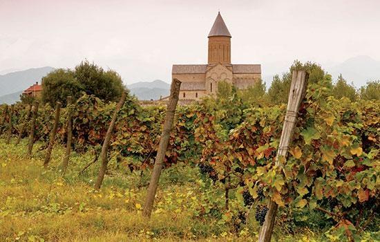 Винные туры по Грузии - знакомство с лучшими виноградниками планеты