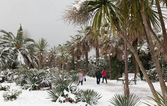 А Вы бывали зимой в Сочи?