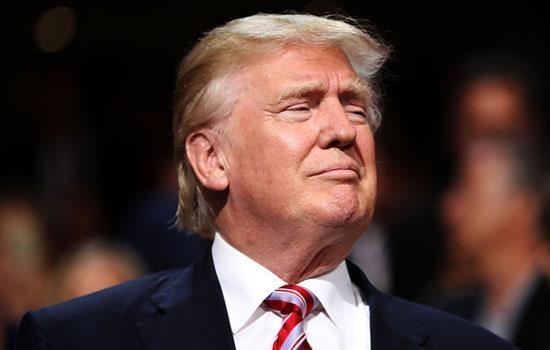 Крошечная моль получила название в честь Дональда Трампа через схожесть прически