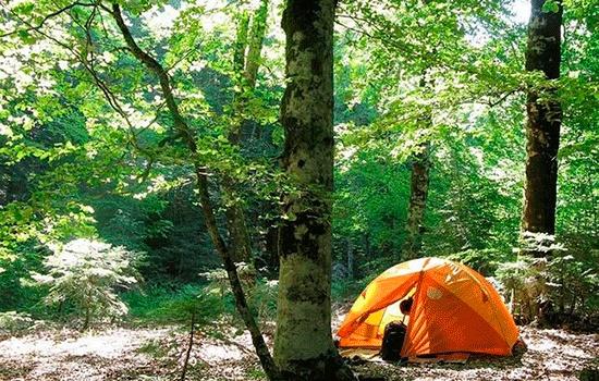 Проведите свой отпуск в экологически чистых направлениях Турции