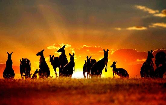 Австралия - одно из лучших мест для одиночного путешествия