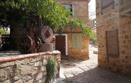 Возвращение к природе: жители городов Турции переезжают в деревни