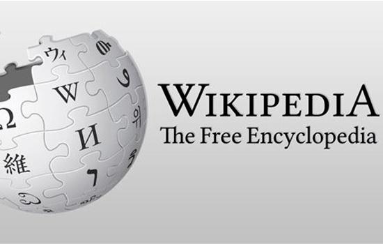 «Пиратская» Википедия появилась в Турции после запрета доступа