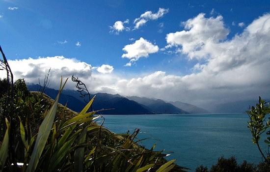 Новая Зеландия: советы путешественникам