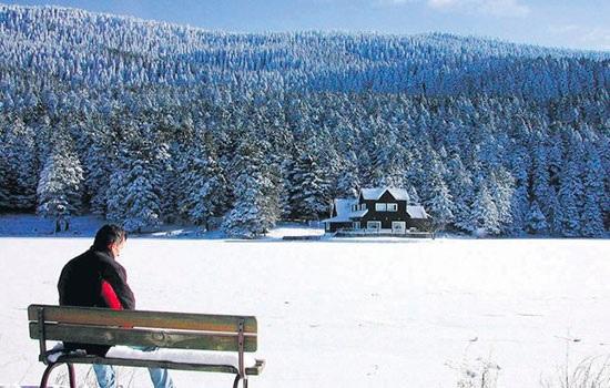 Болу: зимний рай Турции с природными источниками