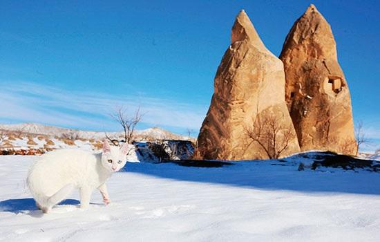 Кападокия подготовила лучшие условия для зимнего семейного туризма