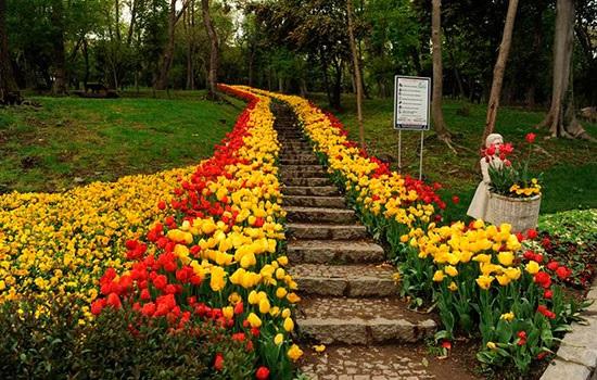 Известные парки и природные зоны Стамбула: отдых весной