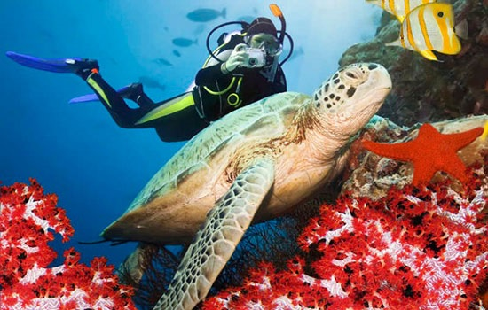 Дайвинг — это подводный отдых, который требует качественного оборудования